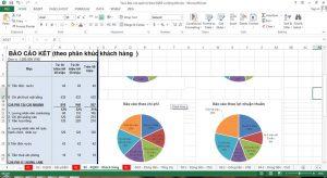 Mẫu Báo cáo kết quả kinh doanh quản trị theo phân khúc khách hàng
