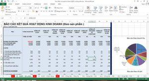 Mẫu Báo cáo kết quả kinh doanh quản trị theo sản phẩm
